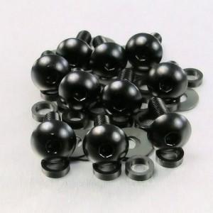 Lot visserie M6 x 1,00 x 10mm - 10 vis tête bombée pour carénages noir
